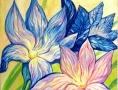 Лепестки цветов